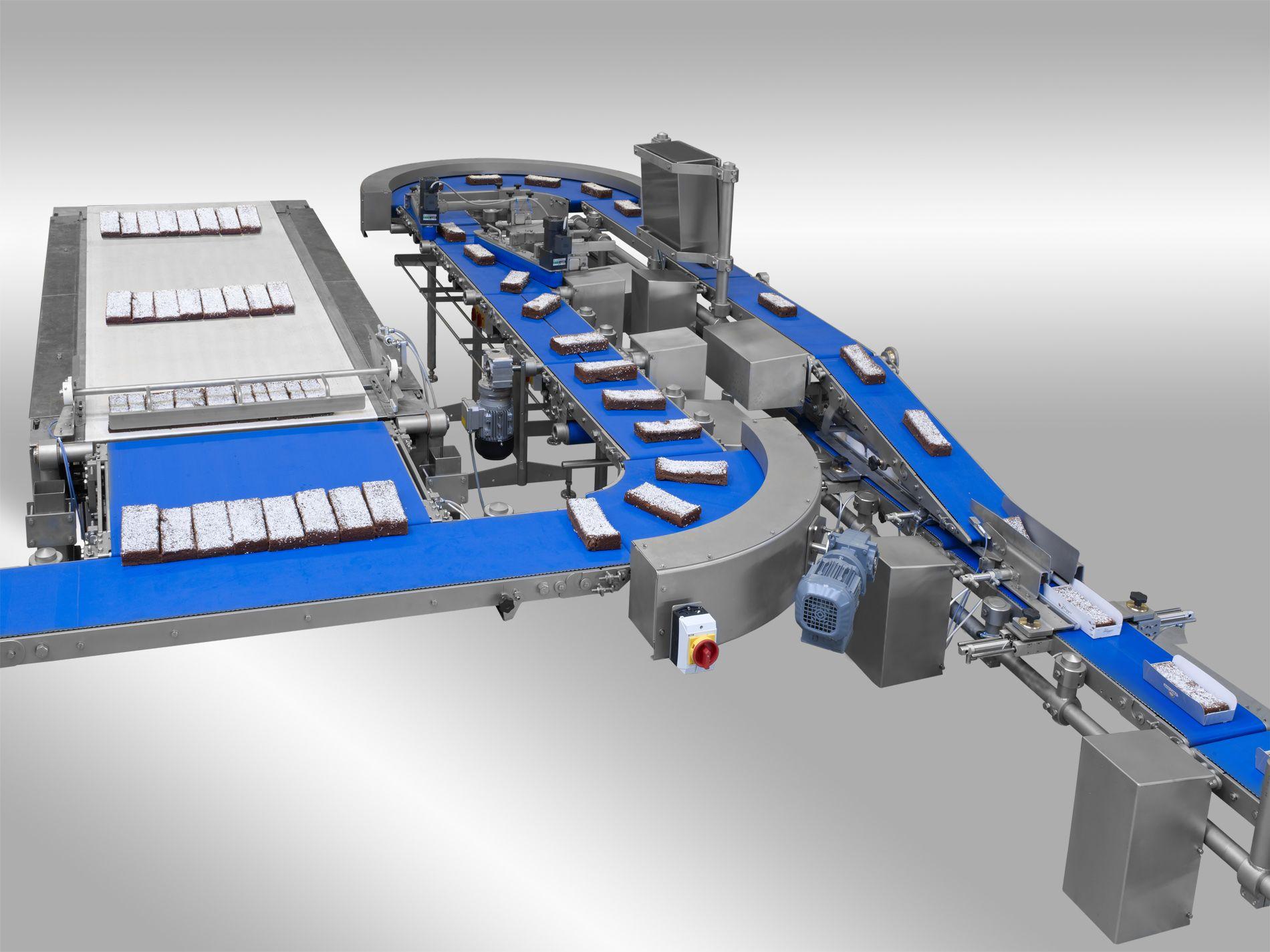 Cake conveyor system